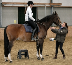 picture: Centered Riding clinics